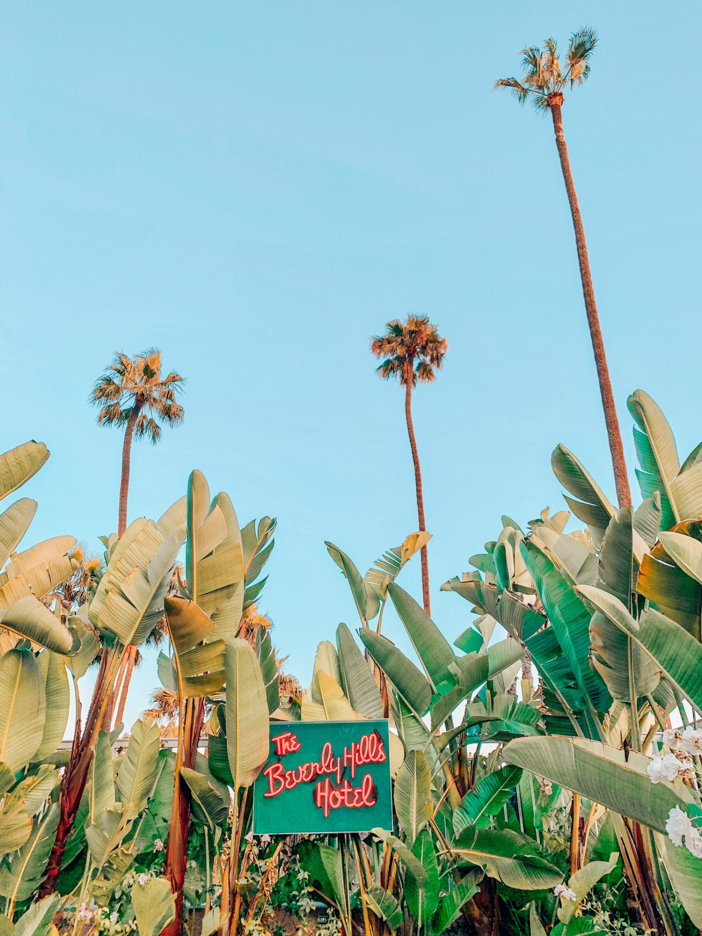 The Best 3 Day Los Angeles City Guide