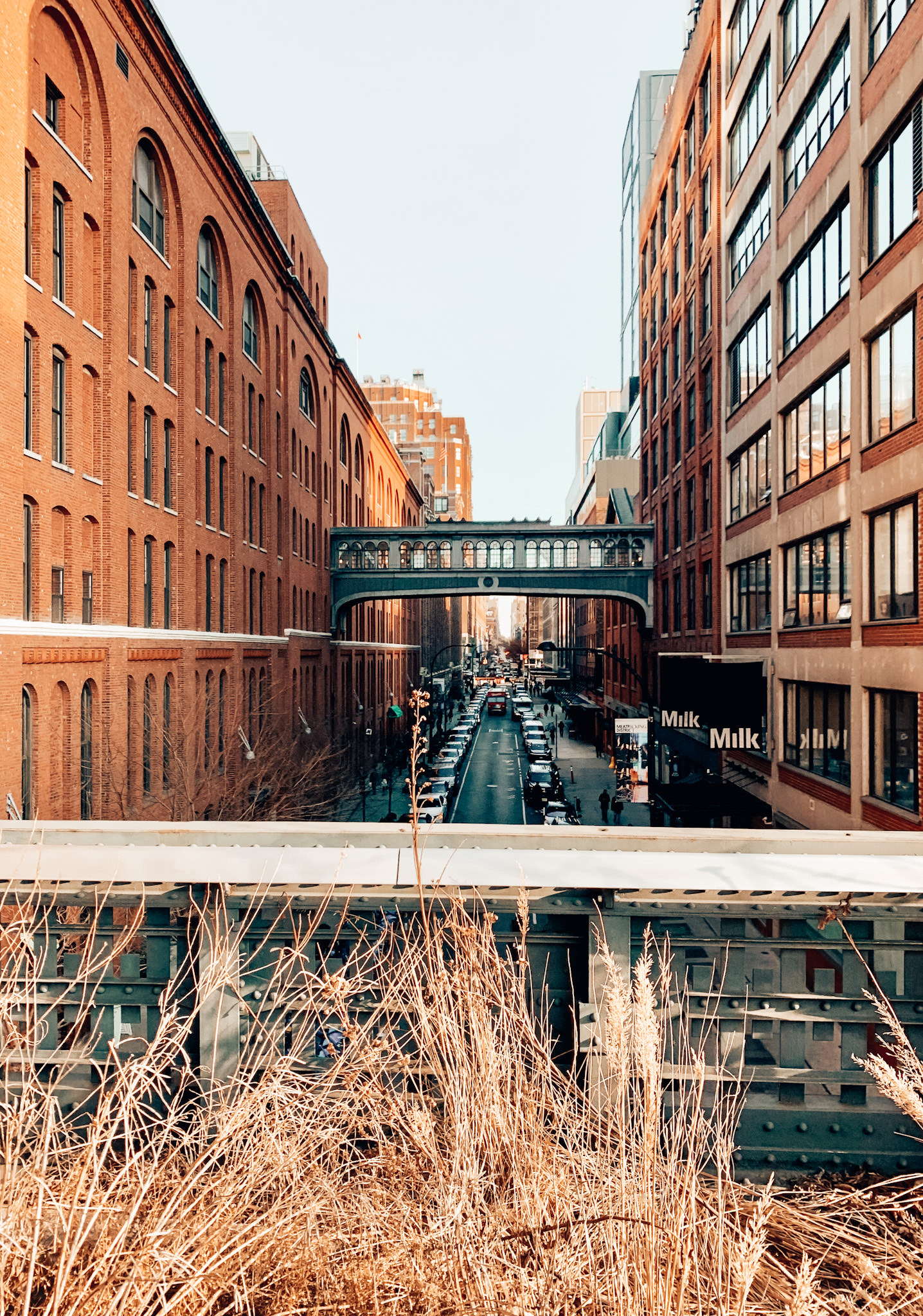 The High Line is one of the best free things to do in New York City
