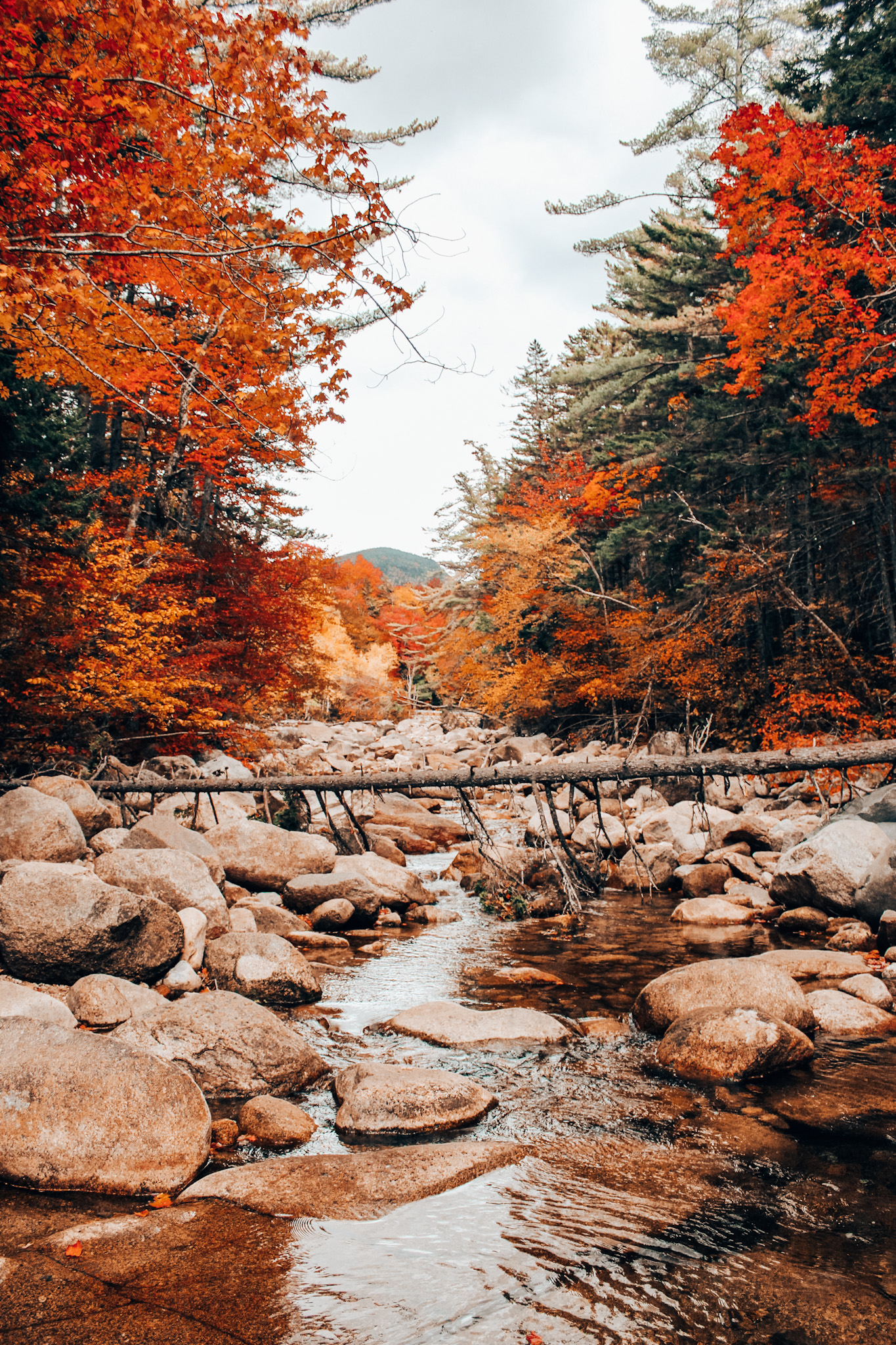 Best Places To Leaf Peep In New England & Beyond