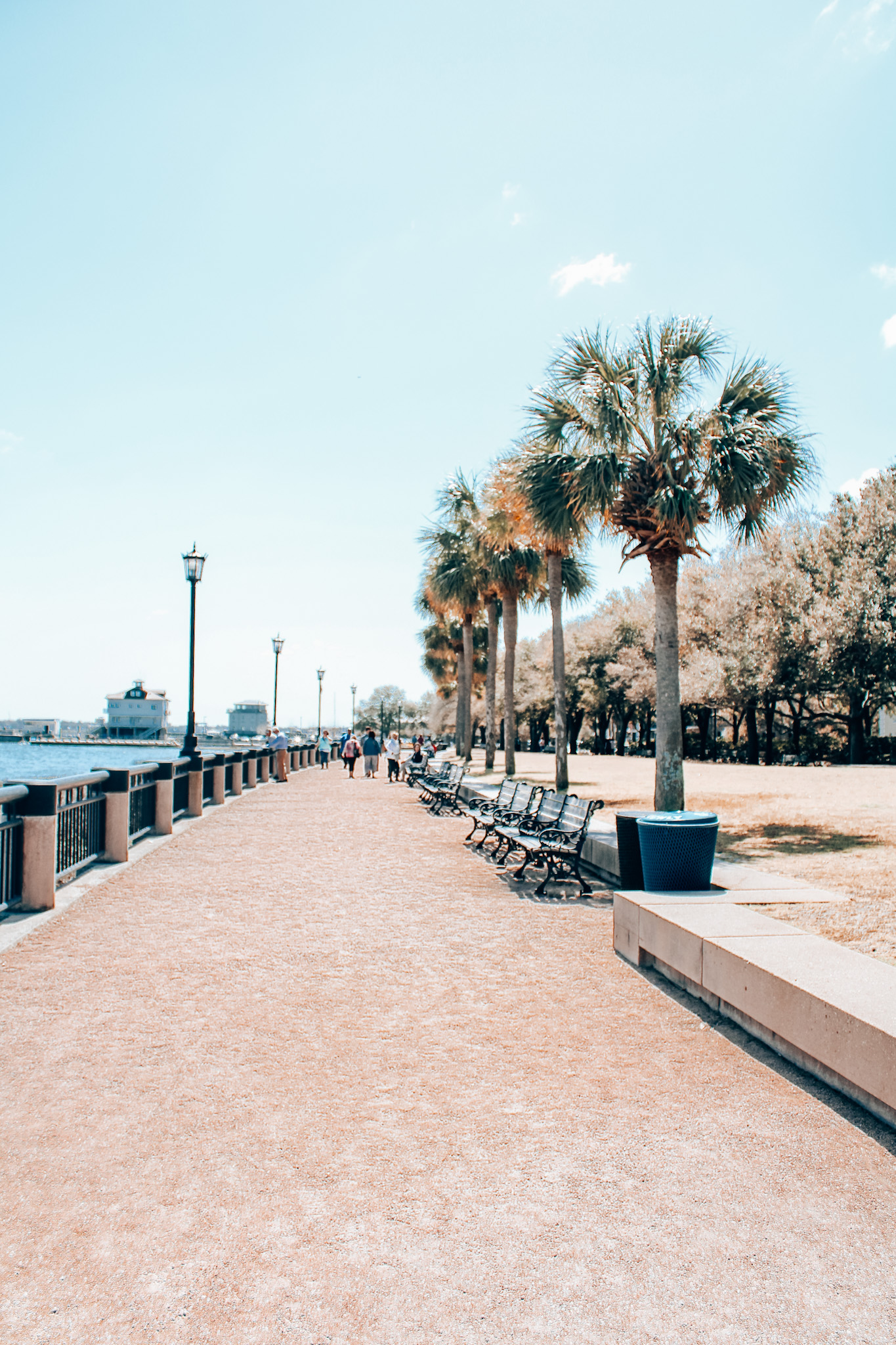 Charleston's Battery on the waterfront