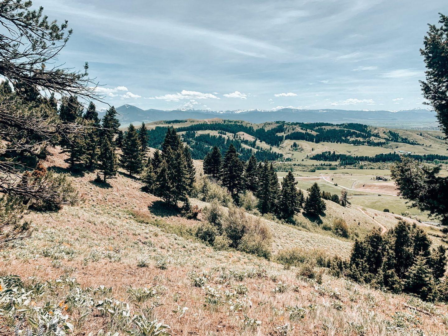 Views of the valley in Bozeman, Montana
