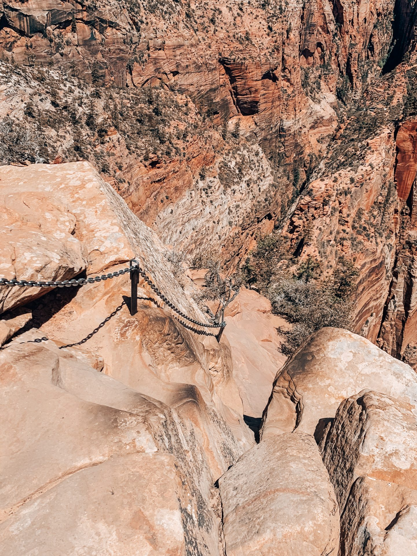 The trail to Angel's Landing