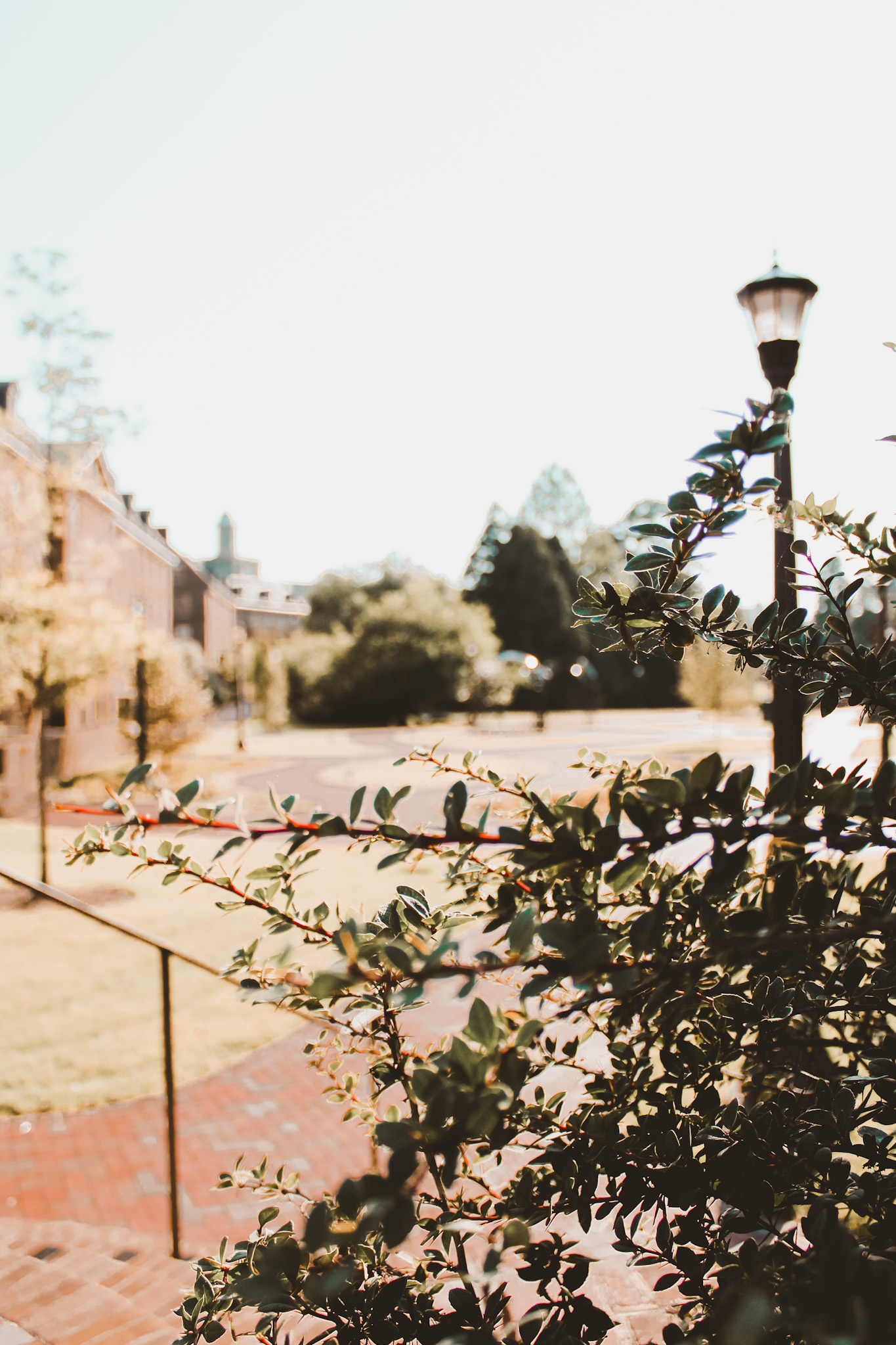 Walking around William & Mary is one of the top things to do in Williamsburg, VA